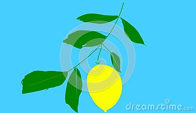 The citron