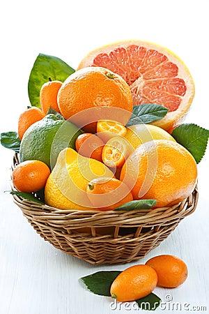 Free Citrus. Stock Photos - 20918033
