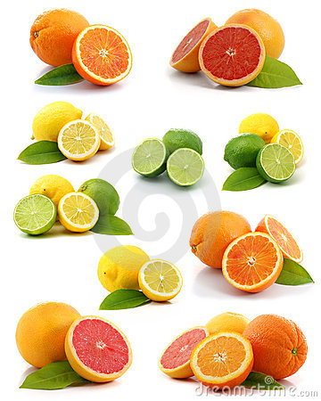 Free Citrus Collection Stock Photography - 5190992