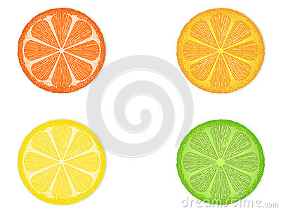 Citrus Fruit Slices Royalty Free Stock Photography - Image: 25540617