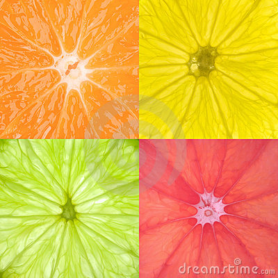 Free Citrus Fruits Royalty Free Stock Images - 3886449
