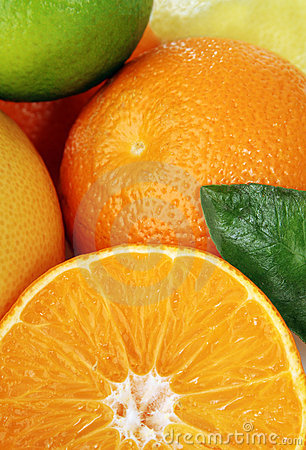 Free Citrus Fruits Stock Photo - 5616410