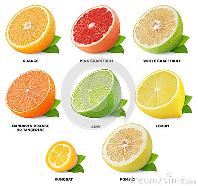 Free Citrus Fruits Collection Stock Photos - 27446463