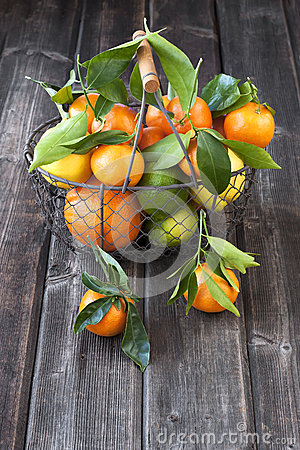 Free Citrus Just From The Tree. Winter Fruits Royalty Free Stock Images - 49729959