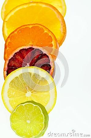 Free Citrus Slices Stock Photo - 14260820