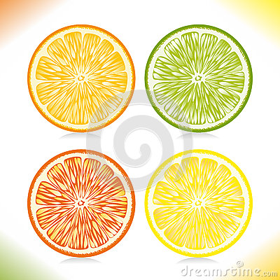Citrus Slices. Stock Photos - Image: 28842963