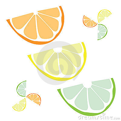 Free Citrus Slices Vector Royalty Free Stock Image - 8219846