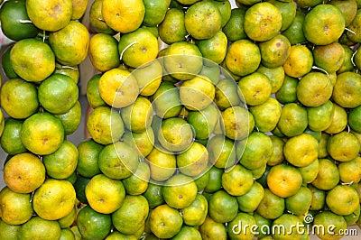 Citrus sweet orange