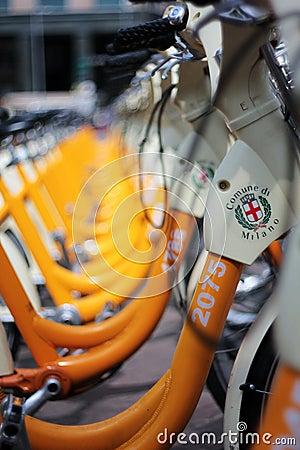 City bikes sharing