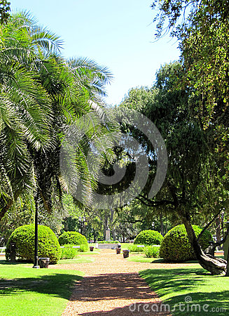 Free City Green Quiet Park Stock Images - 26350124