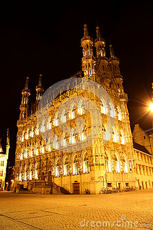 City hall in Leuven - Belgium - at night