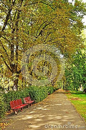 City park in autumn, Riga