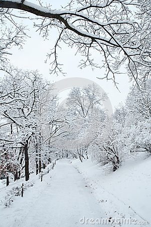 Free City Park Path Covered By Heavy Snow Royalty Free Stock Photo - 30044305