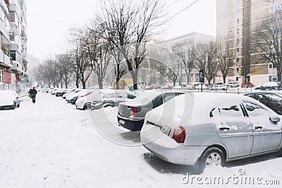 City winter snowfall