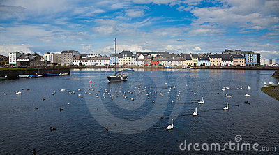 The Claddagh Galway