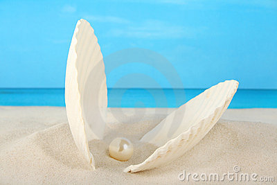 Clam shell containing a pearl on the beach