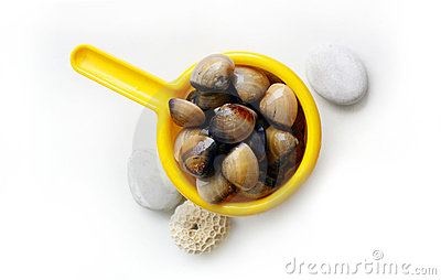 Clams - catch of the day