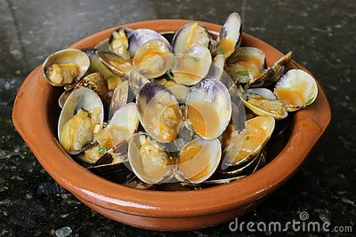 Clams in seafood sauce typical Andalusian and Spanish cuisine