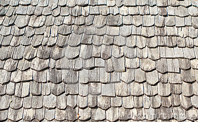 Clapboard shingle