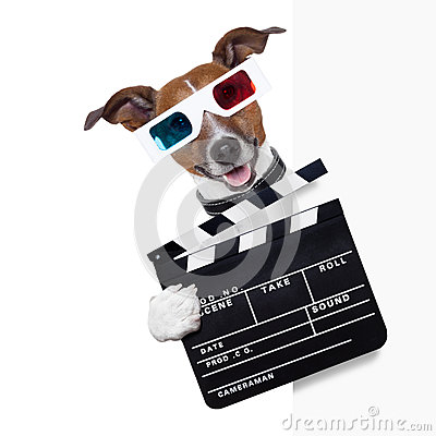 Free Clapper Dog Stock Image - 33126101