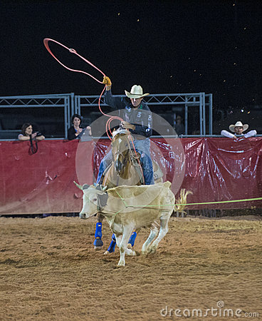 Clark County Fair And Rodeo Editorial Photo Image 40848316