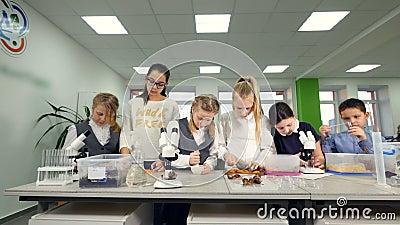 Clase de Biología de la escuela primaria Niños studing la biología, química en laboratorio de la escuela almacen de metraje de vídeo
