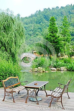 Classic Armchair and wonderful garden