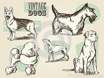 Classic Retro Ornate Dog Collection