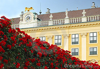 Classical building facade with a rose fence