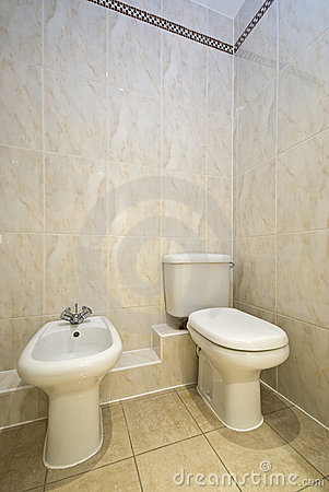 Classy bathroom detail with toilet and bidet