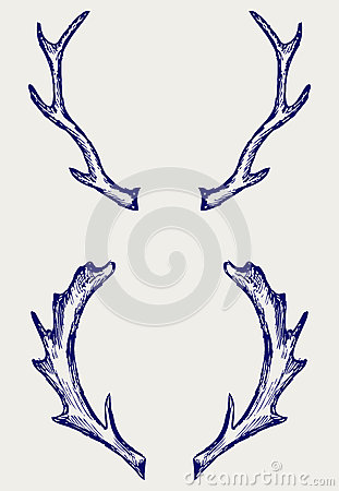 Claxones de los ciervos