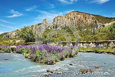 Clay Cliffs Scenic Reserve
