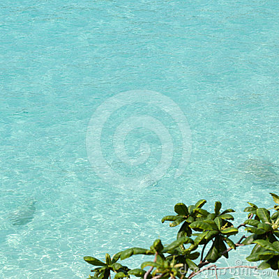 Clean clear blue water