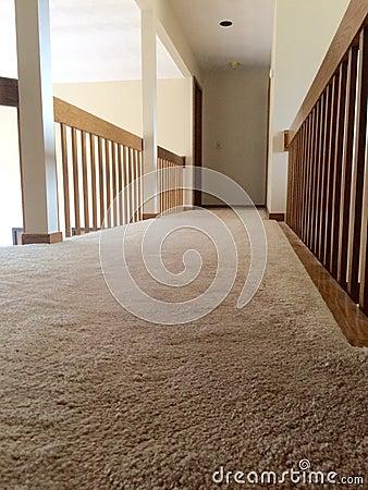 Clean Plush Carpet In Hallway Stock Photo Image 51797896