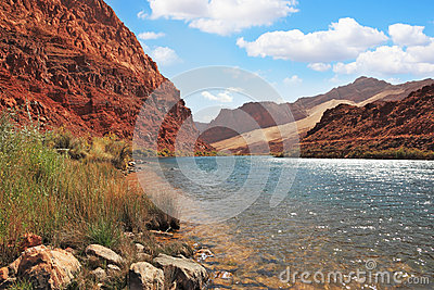 Clean water of the Colorado River