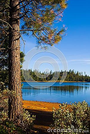 Free Clear Blue Lake Stock Photo - 4272720
