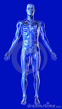 Free Clear Man With Skeleton - Includes Clipping Path Stock Photo - 214430