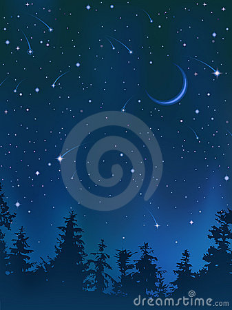 Free Clear Night Sky Over The Forest Royalty Free Stock Image - 8247776