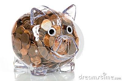 Clear Plastic piggy bank full of pennies