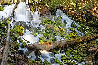 Clearwater Falls Royalty Free Stock Photo - Image: 26094255