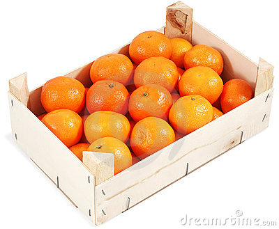 Clementines in container
