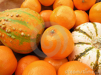 Clementines and decorative pumpkins