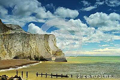 Cliff coast in summer