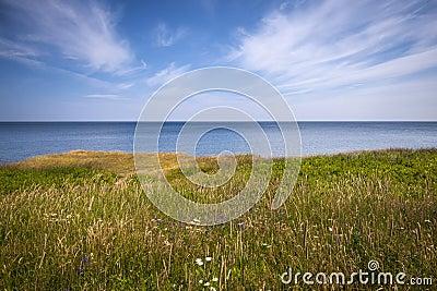 Cliff edge and ocean