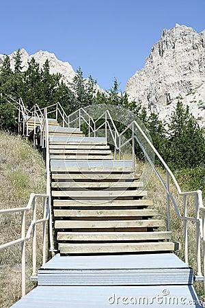 Free Cliff Shelf Nature Trail, Badlands Park Stock Photo - 21793680