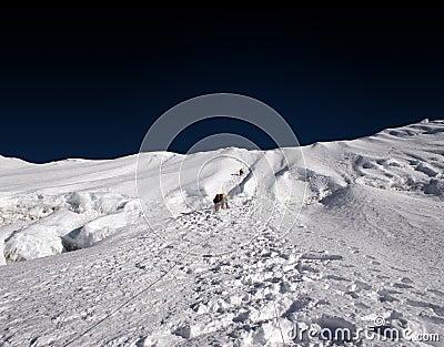 Climbing the Himalayas - Nepal
