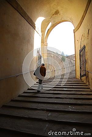 Free Climbing Steps Boboli Gardens Royalty Free Stock Images - 4509679