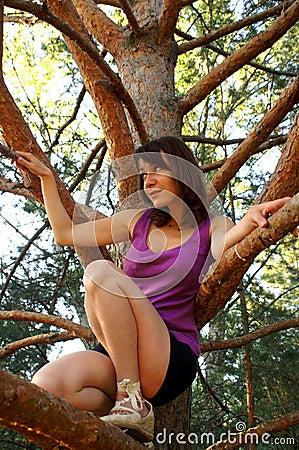 Climbing on timber