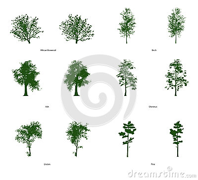 Clip Art Trees de 6 vectores