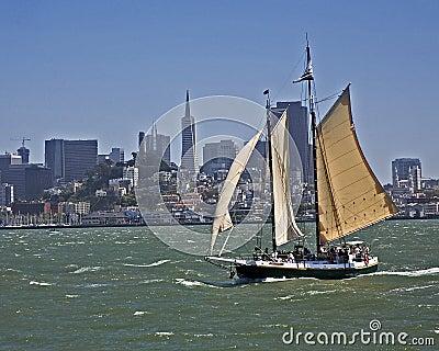 Clipper in San Francisco bay